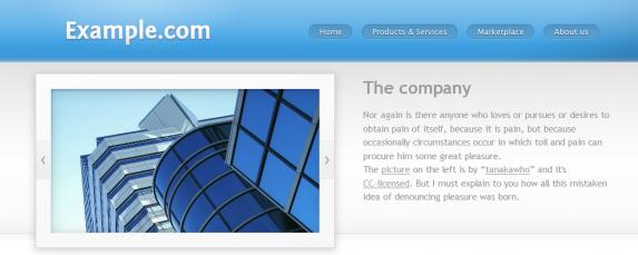 Example.com Template